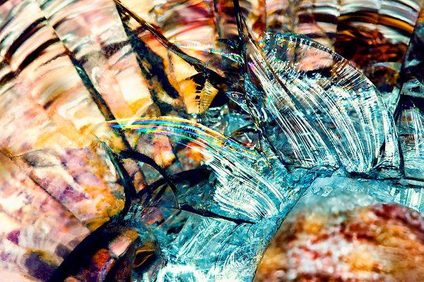 abstract fine art photography VII harmony