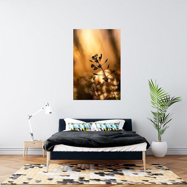Golden Realm Magic Sunset Photography
